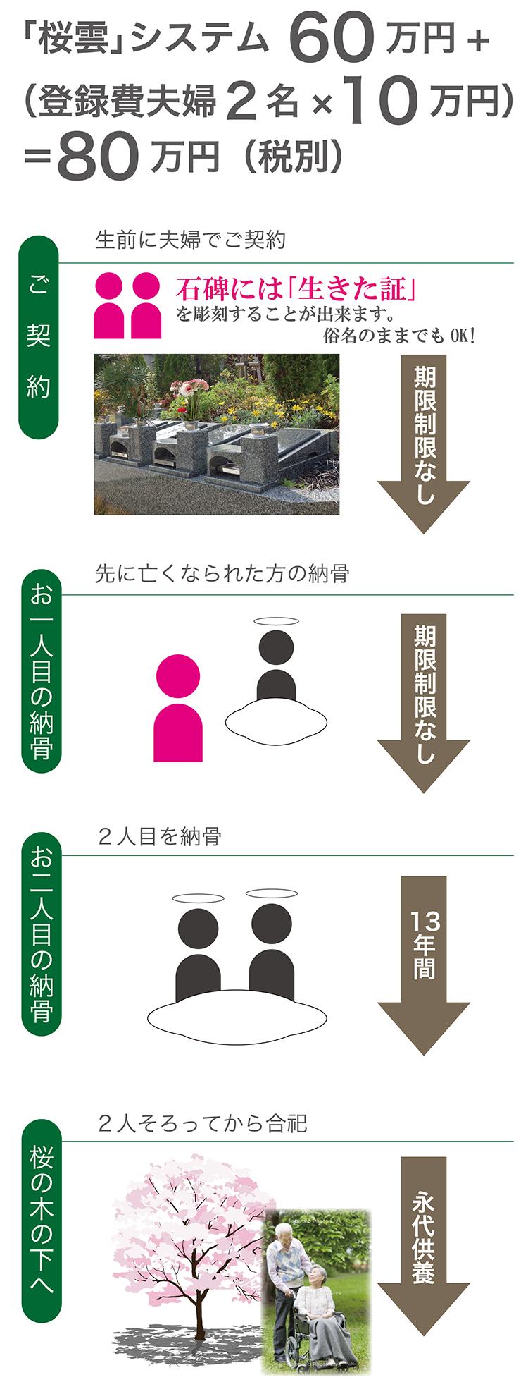 桜雲システム