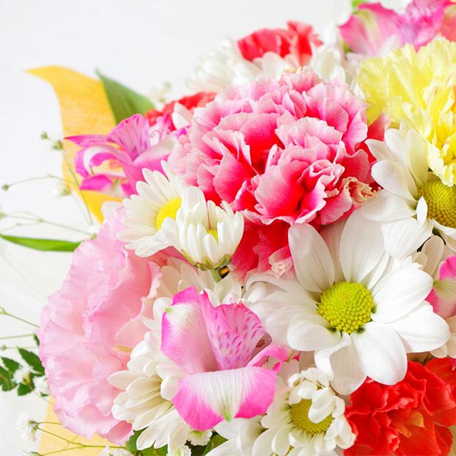 献花用花びら